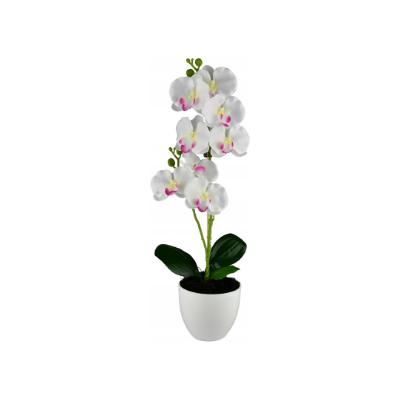 Dirbtinė orchidėja vazone 52 cm