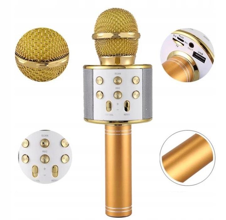 "Belaidis ""Karaoke"" mikrofonas"